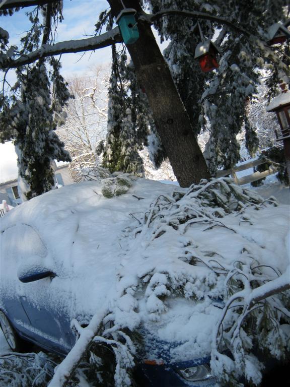 Branch meets Hood. My car!